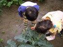kid_0519_07.jpg