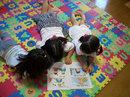 kids_02_0929.jpg