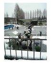 tsu_01_0122.jpg