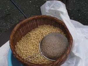 茹で上がった大豆